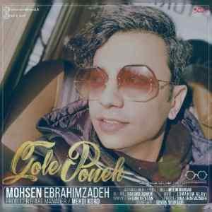 mohsen-ebrahimzadeh-gole-poone-